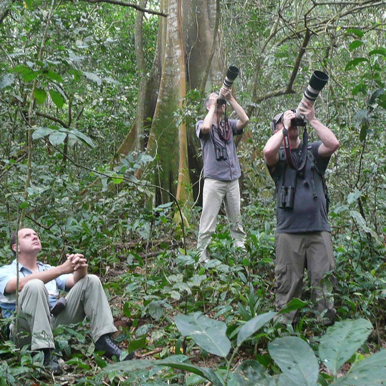 birding or birdwathing safaris