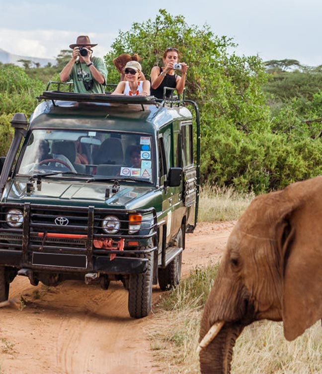 Forever Africa Safaris and Gorilla trekking tours