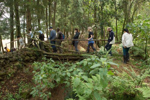 3 Day Rwanda Gorillas & Akagera Wildlife Safari